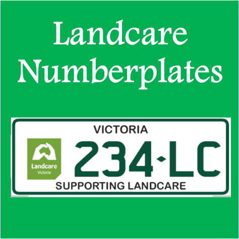 LC Numberplates